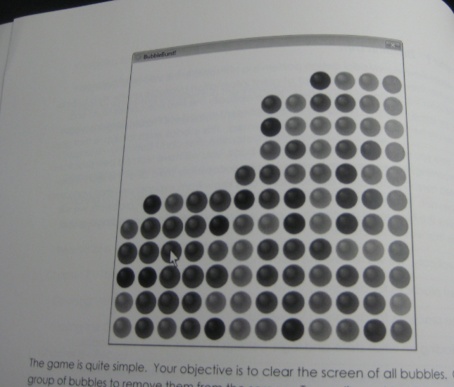 Print screen from the book