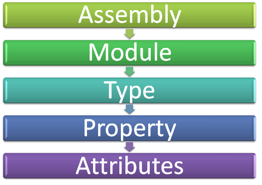 Assembly --> Module --> Type --> Property --> Attributes