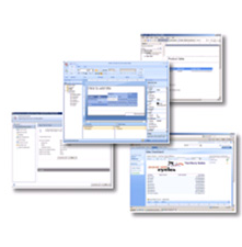 SQL Server 2008 Reporting Services Print Screens